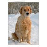 Tarjeta de Navidad del día de fiesta de la nieve