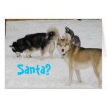 Tarjeta de Navidad del día de fiesta del husky sib