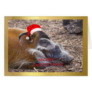 """Tarjeta de Navidad del diseño de """"Warthog lindo"""""""