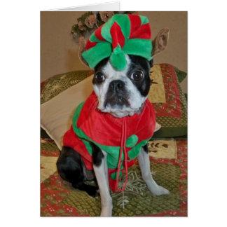 Tarjeta de Navidad del duende de Boston Terrier