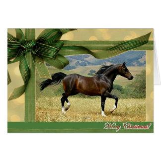 Tarjeta de Navidad del espacio en blanco del cabal