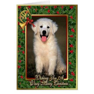Tarjeta de Navidad del espacio en blanco del perro