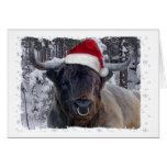 Tarjeta de Navidad del ganado de la montaña