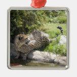 Tarjeta de Navidad del guepardo Ornamento Para Arbol De Navidad