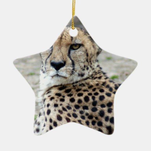 Tarjeta de Navidad del guepardo Ornamentos De Reyes