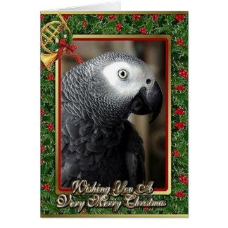Tarjeta de Navidad del loro del gris africano