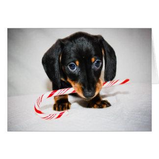 Tarjeta de Navidad del perrito del Dachshund