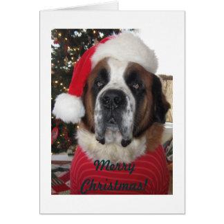 Tarjeta de Navidad del perro de Santa St Bernard