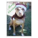 Tarjeta de Navidad del pitbull