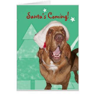 Tarjeta de Navidad del sabueso