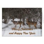 Tarjeta de Navidad dos de los ciervos