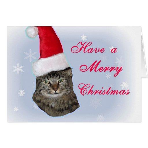Tarjeta de Navidad enojada del gato