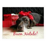 Tarjeta de Navidad italiana de Buon Natale Tarjetas Postales