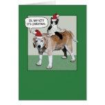 Tarjeta de Navidad: Perro y gato