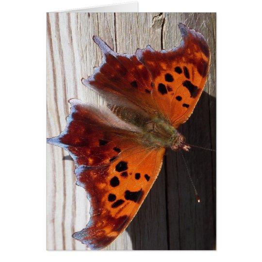 Tarjeta de nota anaranjada de la mariposa