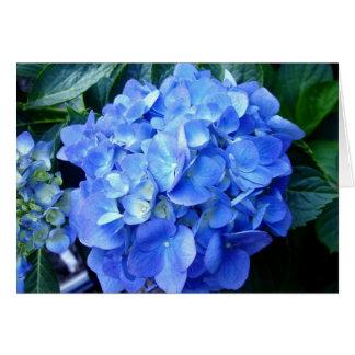 Tarjeta de nota azul del Hydrangea