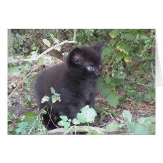 Tarjeta de nota borrosa del gatito