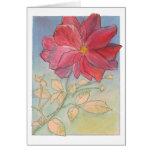 Tarjeta de nota color de rosa de la plena floració