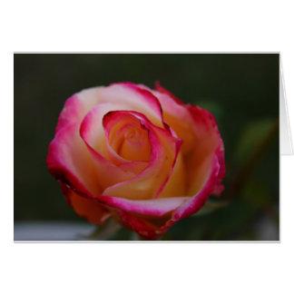 Tarjeta de nota color de rosa hermosa