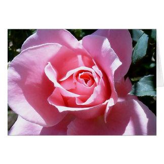Tarjeta de nota color de rosa rosada