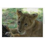 Tarjeta de nota de Cub de león 3