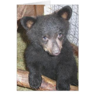 Tarjeta de nota de Cub de oso