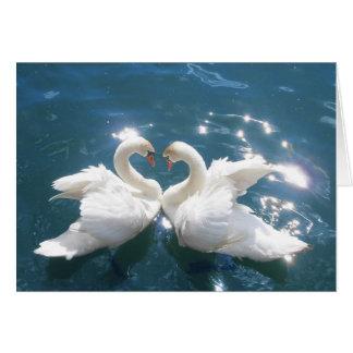 Tarjeta de nota de dos amantes del cisne
