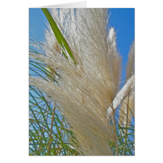 Tarjeta de nota de la hierba de pampa