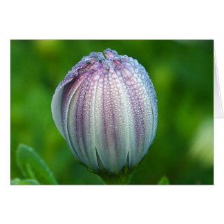 tarjeta de nota de la mañana-rocío-en-púrpura-blan