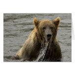 Tarjeta de nota de la pesca del oso de Brown