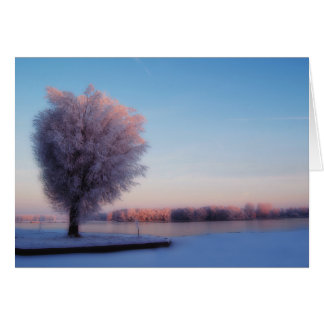 Tarjeta de nota de los árboles Nevado
