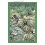 Tarjeta de nota de los cactus del remolino del