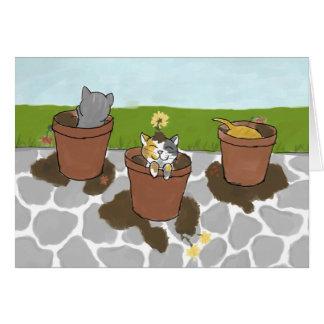 Tarjeta de nota de los gatitos de la maceta