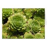 Tarjeta de nota de los Succulents
