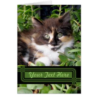 Tarjeta de nota de ojos verdes del gato