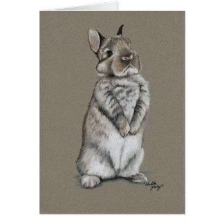 Tarjeta de nota del arte del conejo de conejito