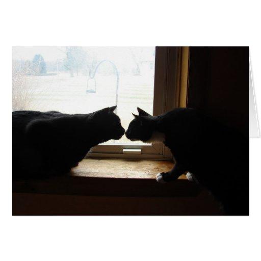 Tarjeta de nota del beso del gatito