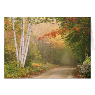 Tarjeta de nota del camino de la colina de Cilley