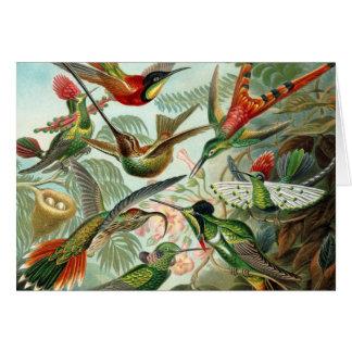 Tarjeta de nota del colibrí