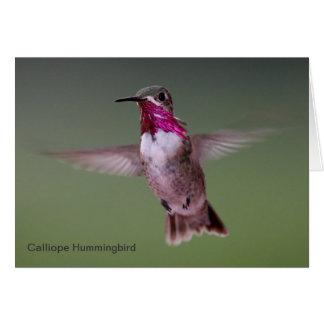 Tarjeta de nota del colibrí del Calliope