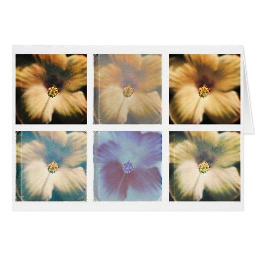 Tarjeta de nota del collage del hibisco