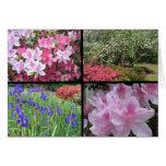 tarjeta de nota del collage del iris del dogwood d