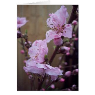 Tarjeta de nota del espacio en blanco del flor de