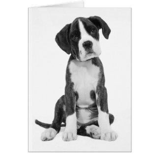 Tarjeta de nota del espacio en blanco del perro de tarjeta pequeña