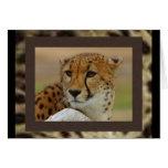 Tarjeta de nota del guepardo