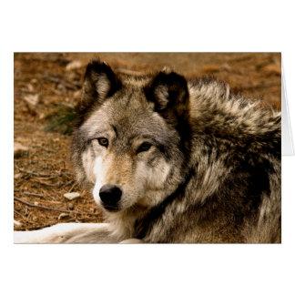 Tarjeta de nota del lobo de madera 1630