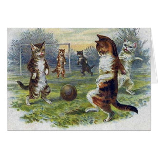 Tarjeta de nota del partido de fútbol del gato del