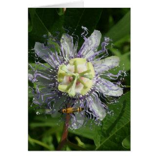 Tarjeta de nota del Passionflower