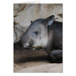 Tarjeta de nota del Tapir