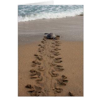Tarjeta de nota del viaje de la tortuga de Hawksbi
